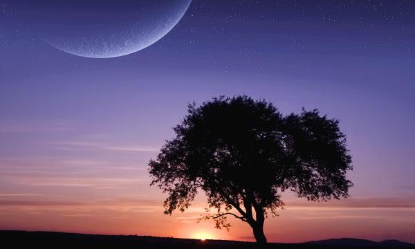 тридцатый лунный день