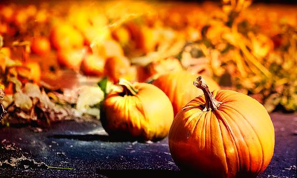 православный календарь на октябрь 2018 года