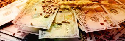 Как привлечь удачу и деньги в домашних условиях
