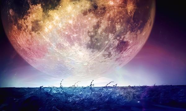 лунный день для знакомства